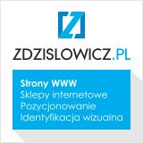 Strony WWW Rzesz�w